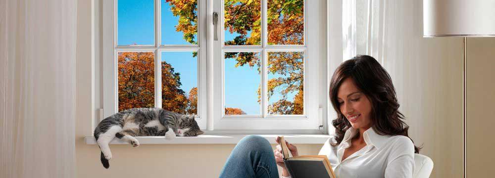 fenêtres et silence